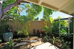 256 Mehani Circle, Kihei Hawaii Maui yard